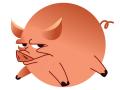 生肖猪2016年运势详情